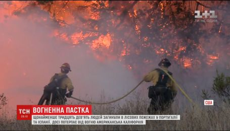 Влада Португалії просить про міжнародну допомогу в боротьбі з лісовими пожежами
