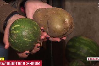 Самогон із чорниці та картопля завбільшки з кавун: як живуть останні самосели Чорнобильської зони