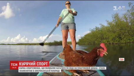 """Курица Лоретта стала звездой во Флориде из-за своего увлечения кататься на доске """"паддл"""""""