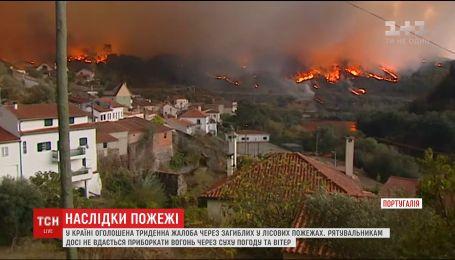 У Португалії оголосили жалобу за десятками загиблих у лісових пожежах