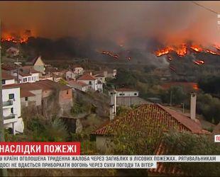 В Португалии объявлен траур по десяткам погибших в лесных пожарах
