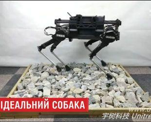 Китайские инженеры разработали робота-собаку, которым можно управлять через Wi-Fi