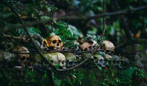 Смертельнее, чем СПИД: ученые установили, что вызывает огромное количество смертей людей в мире
