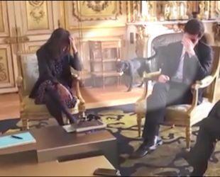 Пес Макрона подзюрив на камін у Єлисейському палаці