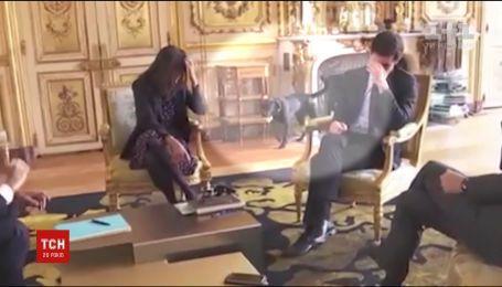 Пес Макрона обгадил камин в Елисейском дворце