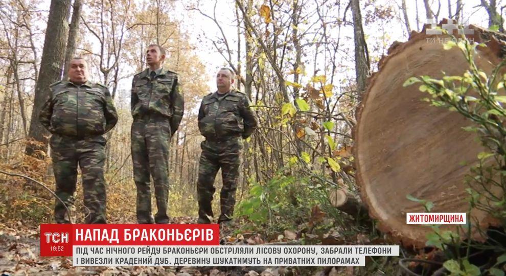 Крадіжка з стріляниною: браконьєри обікрали лісову охорону на Житомирщині