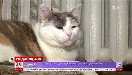 Украинцы мерзнут в квартирах в ожидании отопления