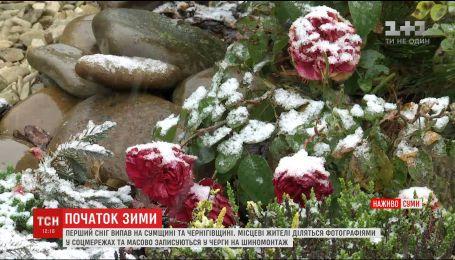Невероятные фото и опасность на дорогах: в северные области Украины пришла зима
