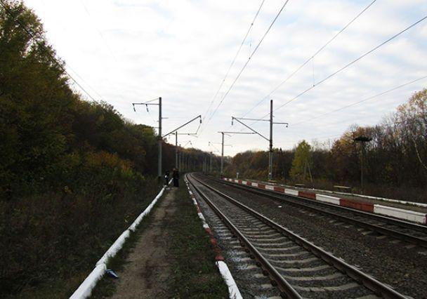 На Хмельнитчине скоростной поезд переехал бабушку, которая возвращалась из леса с грибами
