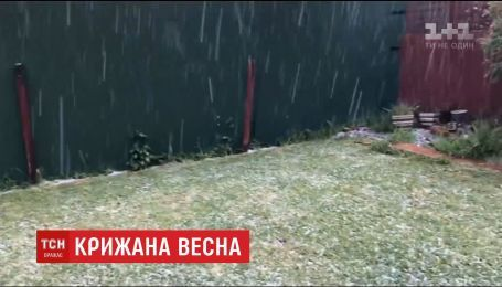 Австралія страждає від весняної негоди зі снігом