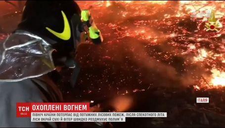 Север Италии охватили ужасные лесные пожары