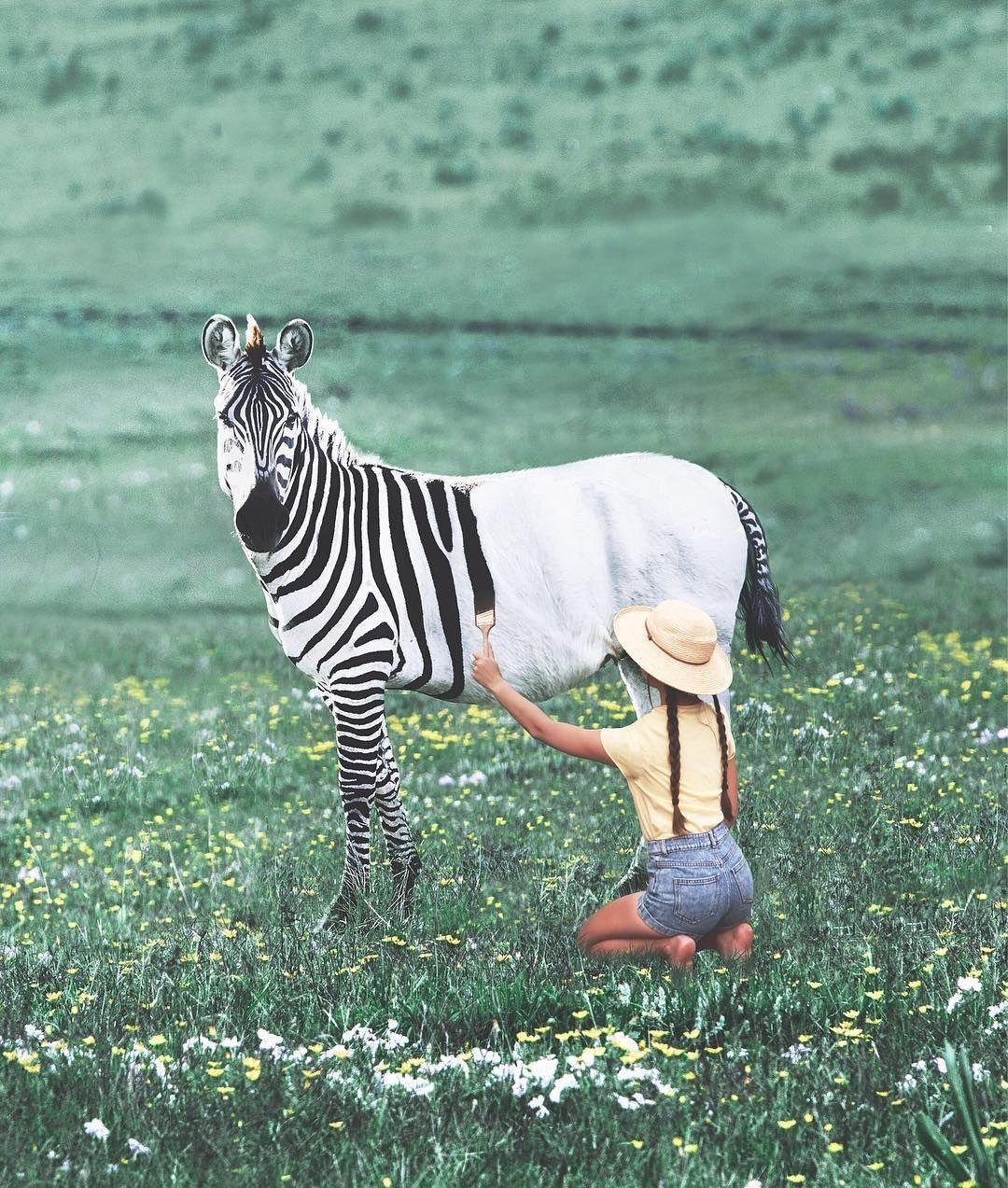 Тревел-блог, зебра й дівчина