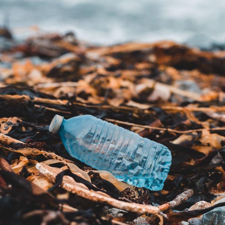 Еда с собой стала основной причиной загрязнения океана пластиком — ученые
