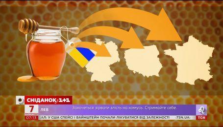 Валютная ситуация на рынке и украинский мед на экспорт - экономические новости