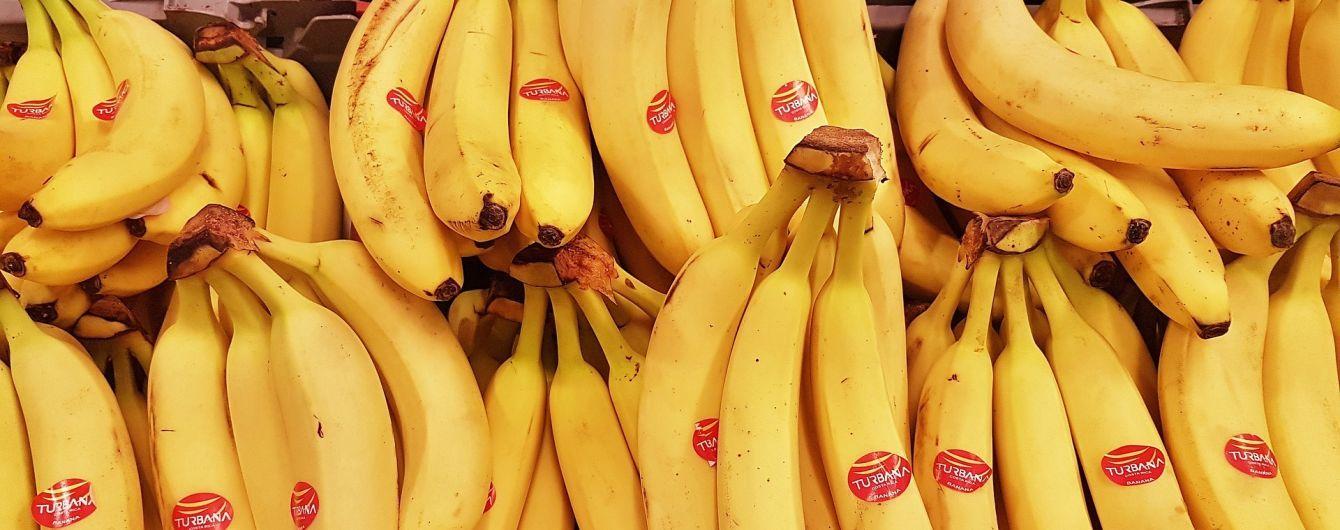 Британські вчені занепокоєні масштабним зникненням бананів
