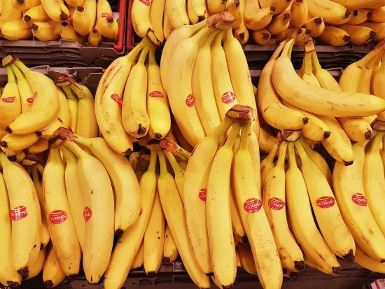 Британські вчені занепокоєні масштабним вимиранням бананів