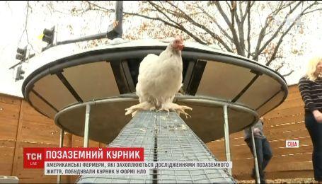 В США супруги-фермеры установили во дворе домик для птиц в форме НЛО