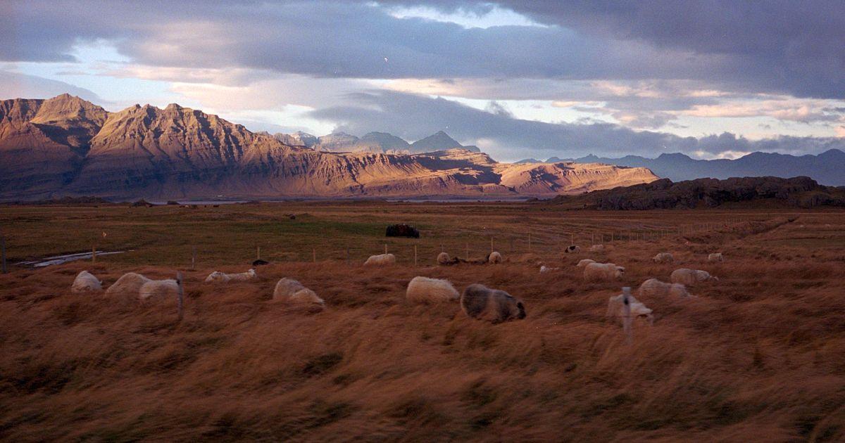 Краєвид на південному сході Ісландії