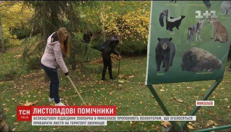 В зоопарке Николаева раздают бесплатные билеты волонтерам за помощь в уборке листьев