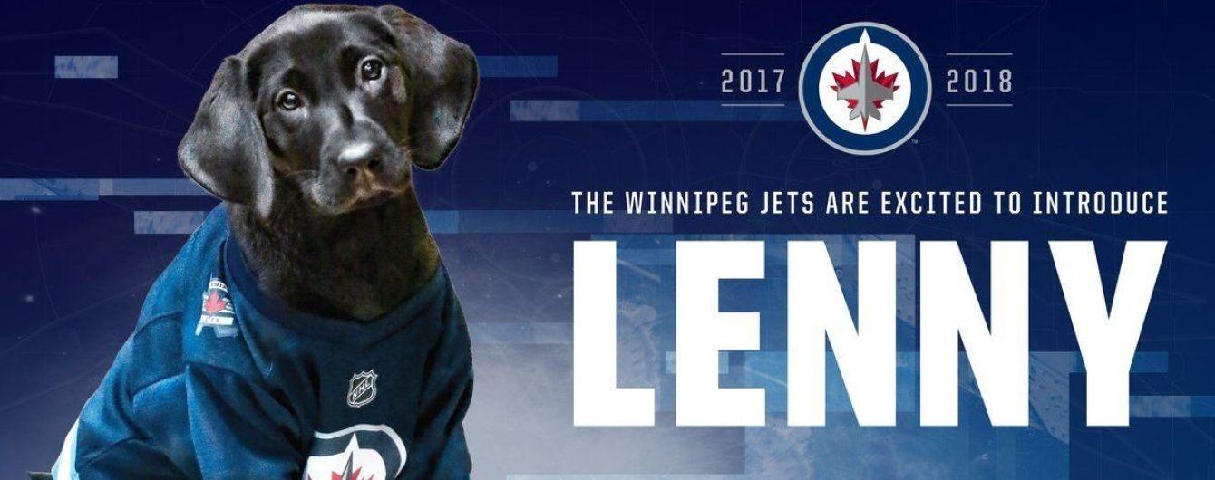 Всім боятися: канадський хокейний клуб взяв на службу маленького цуценятка