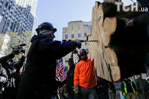 ВНью-Йорке установили главную рождественскую ель города