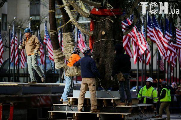 Главный символ праздника. В Нью-Йорк привезли невероятную рождественскую елку