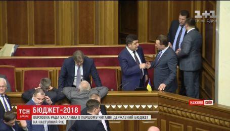 Верховна Рада ухвалила державний бюджет-2018 у першому читанні