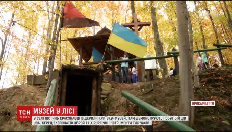 Крыивка бойцов УПА появилась в лесу на Прикарпатье