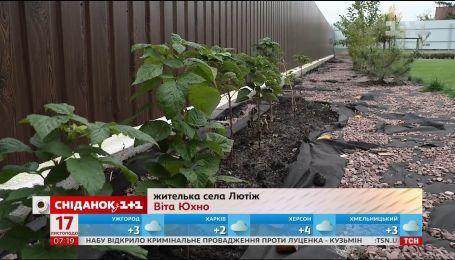 Українці частіше стали обирати життя у передмісті