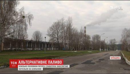 В Украине приобретают популярность котельные, которые производят тепло из биотоплива