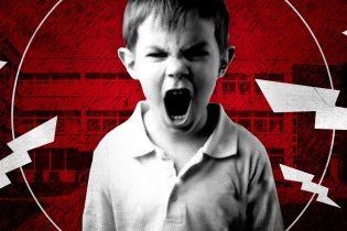 """""""Открыто 12 уголовных производств"""". В Киеве восьмилетний мальчик 1,5 года терроризирует всю школу"""