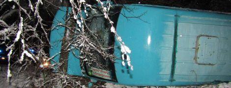 На Луганщине микроавтобус слетел с заснеженной дороги и перевернулся, пострадали 5 человек