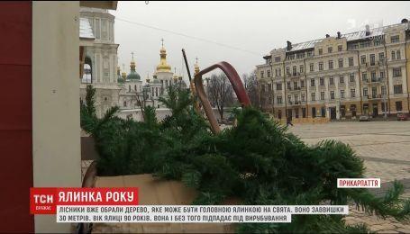 На Софійській площі тривають приготування до приїзду головного дерева країни