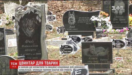 В Киеве более 16 лет не могут достроить кладбище домашних животных