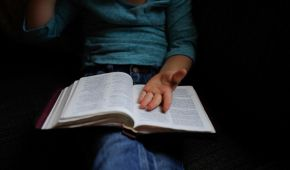 Игровые тренинги и веселые упражнения в библиотеках: как сделать чтение модным среди малышей