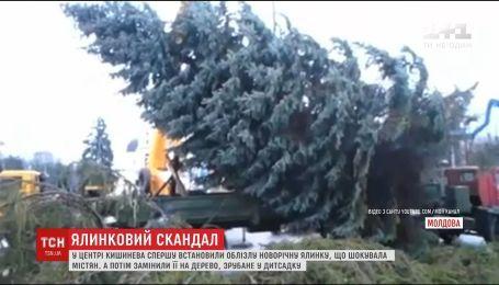 Главную елку Украины уже везут в Киев