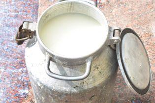 Західні вчені заявили про радіоактивне молоко в Україні - Independent