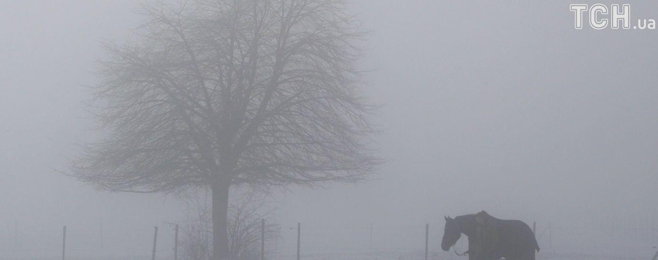 Сніг в Україні та реакція на скандал у НАБУ. П'ять новин, які ви могли проспати