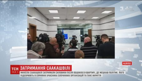 """Саакашвілі звинувачують у сприянні злочинній організації """"сім'ї"""" Януковича"""