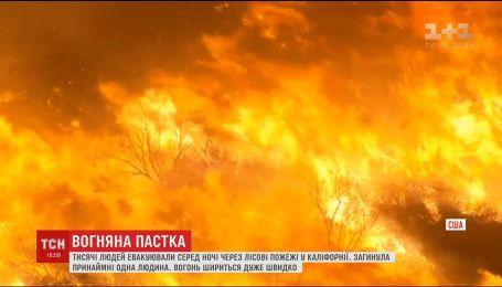 Лесные пожары в Калифорнии привели к массовой эвакуации людей