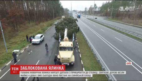 Новогоднюю елку, несмотря на все проблемы, доставили в Киев