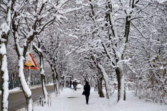 Середа буде зі снігами, дощами та ожеледицею. Прогноз погоди на 6 грудня