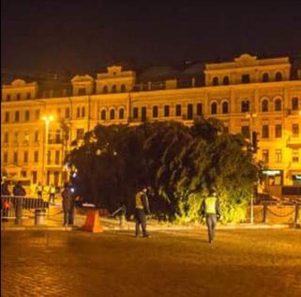 У столиці почали встановлювати різдвяну ялинку