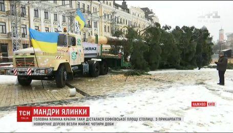 Обратный отсчет до начала праздников начинается. Елка наконец доехала в Киев