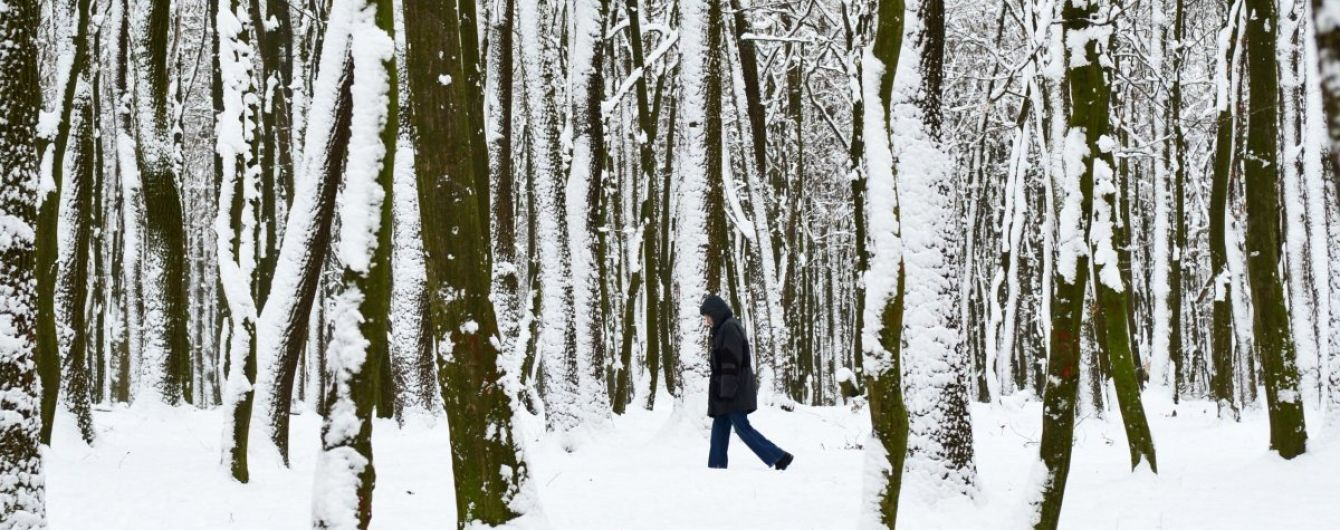 Синоптики обіцяють сніги, дощі та ожеледицю. Прогноз погоди на 7-11 грудня