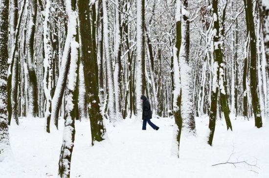 Скасування рейсів і замети на дорогах: сильний снігопад викликав проблеми у транспортному сполученні в Європі