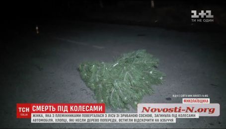Вблизи Николаева женщина, которая возвращалась из леса со срубленной сосной, попала под колеса авто