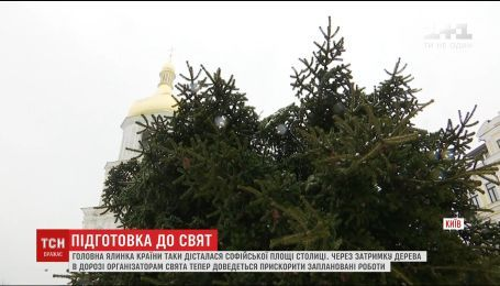 На Софийскую площадь привезли главную елку страны