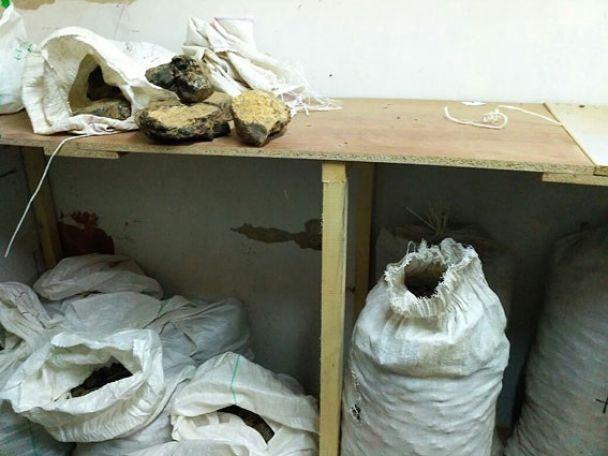 У Рівненській області поліцейські знайшли більше тонни нелегально видобутого бурштину