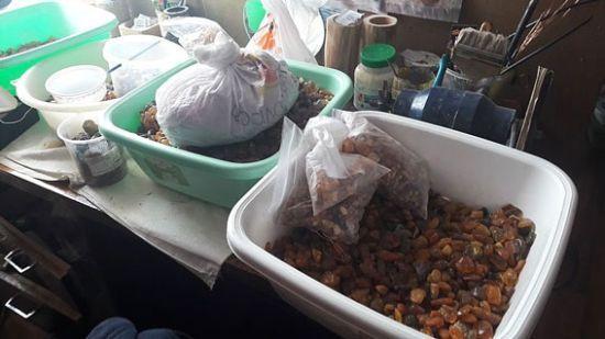 В Ровенской области полиция обнаружила более тонны нелегально добытого янтаря